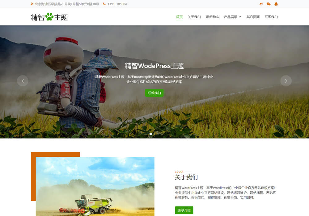wordpress农药主题